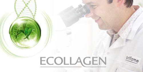 Орифлэйм инвестирует в технологические разработки стволовых клеток растений