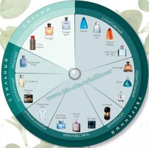 диаграмма ароматов для мужчин, как выбрать парфюм