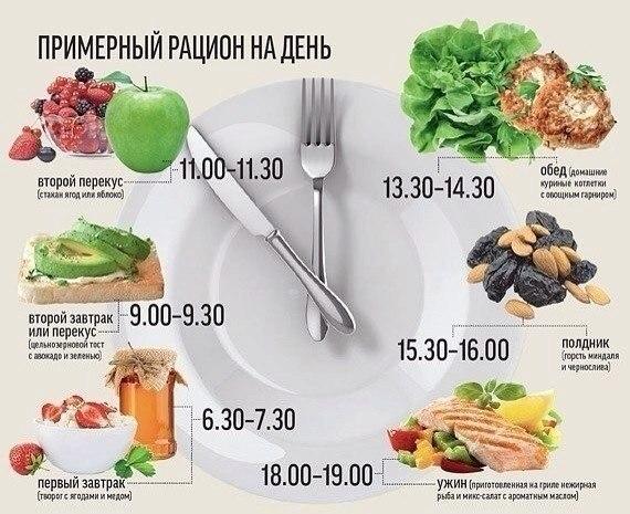 здоровое питание, рацион на день, вэлнэс